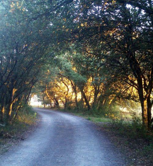 Vía Verde del Zadorra - Nanclares